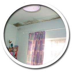 Condensation Problems Causing Black Mould Growth