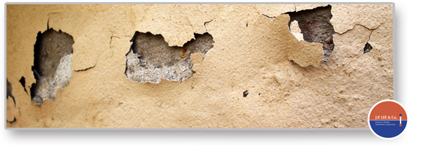 dampness in walls and floors professional solutions DIY solutions