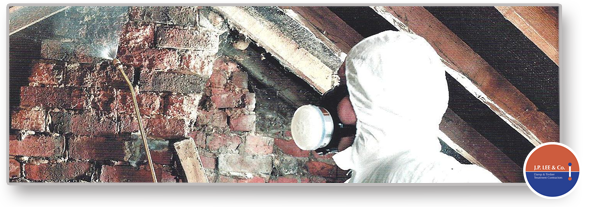 Damp and timber specialist contracting services